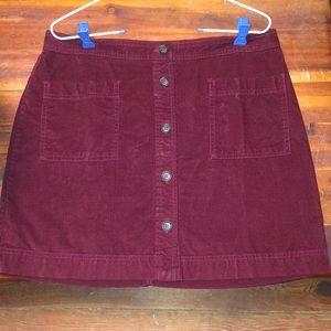 GAP Skirts - Gap Skirt